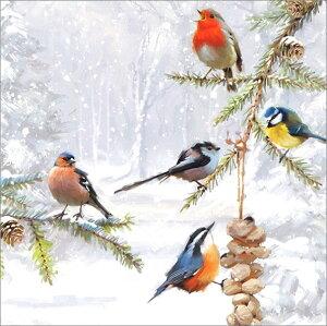 グリーティングカード 【クリスマス】「5匹の鳥たち」【封筒サイズ/163×163mm】【カードサイズ/158×158mm】メッセージカード/定形外/おしゃれ/イギリス/輸入雑貨(XBAC0056)