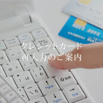Enter your credit card data information