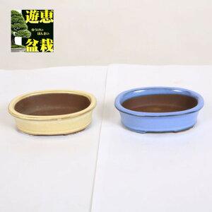 盆栽鉢:国産楕円鉢