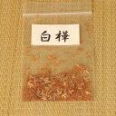 盆栽種子:白樺【お得】