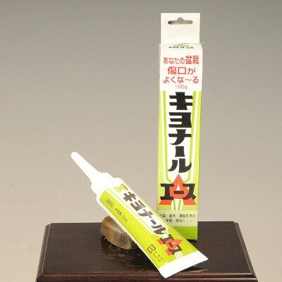 癒合剤:キヨナールエース100g