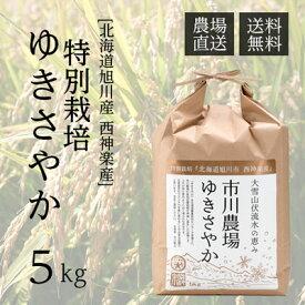 【新米】【農家直送】市川農場が世に出した新しい北海道米「ゆきさやか」5kg【送料無料】/米/お米/北海道米/送料込み