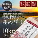 【新米予約】市川農場直送「29年度産ゆめぴりか」10kg(5kg×2)【送料無料】米/お米/北海道米/送料込み