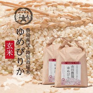 【限定販売】【新米】ゆめぴりか玄米 20kg 送料無料 北海道米 農場直送 令和3年産 北海道旭川産 お米 米 ギフト