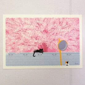 【猫のポストカード】たびねこ 桜の木の下で(森俊憲・もりとしのり)(黒猫・三毛猫)(絵葉書 絵はがき 猫雑貨 猫グッズ ネコ雑貨 ねこ柄 キャット)EC