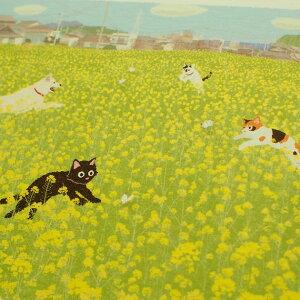 【猫のポストカード】たびねこ菜の花ダンス(森俊憲・もりとしのり)(黒猫・三毛猫・白黒猫・犬)(絵葉書絵はがき猫雑貨猫グッズネコ雑貨ねこ柄キャット)EC