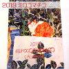 【猫のカレンダー・2019年】ミロコマチコ壁掛けカレンダー(猫と色々な生き物たち)(グリーティングライフ猫雑貨猫グッズネコ雑貨ねこ柄キャット)