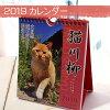 【2019年・猫のカレンダー】(卓上・壁掛け兼用)猫川柳(週めくり)(猫雑貨猫グッズネコ雑貨ねこ柄キャット)