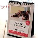 【2019年・猫のカレンダー「人生はニャンとかなる!」【ラッキーシール対応】(週めくり・卓上・壁掛け兼用)(猫雑貨 猫グッズ ネコ雑…
