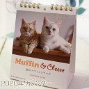 【猫のカレンダー】2020年 マンチカンのマフィンとセルカークレックスのチーズ 卓上カレンダー(猫雑貨 猫グッズ ネ…