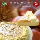 北海道限定【マロンケーキ】モンブラン好きにはたまりません!なんと21センチ〜送料無料【ギフトにも】 マロン スイー…