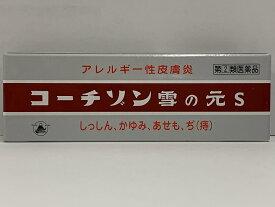 【第(2)類医薬品】コーチゾン雪の元S(チューブ入) 6g