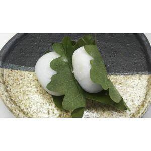 冷凍和菓子 かしわ餅 12個(個50g)x16P(P650円税別)冷凍 業務用 ヤヨイ