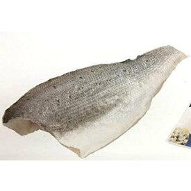 台湾産 スズキフィーレ 10kg(枚600〜800g)kg1,600円(税別) 生食用 限定品 業務用 ヤヨイ