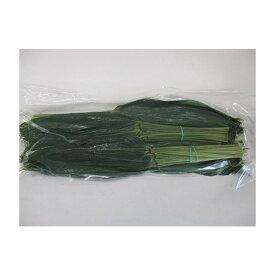 国産 笹の葉 笹葉真空MS(枝付き)200枚×13P(2,220円税別)業務用 ヤヨイ