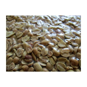 二つ割れピーナッツ 20kg(Kg820円税別)落花生 業務用 ヤヨイ