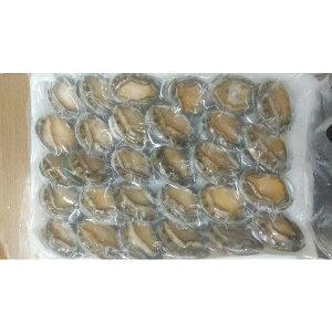 中国産 殻付きエゾ鮑1kg(31〜40g)x10P(4600円税別)限定品 業務用 ヤヨイ