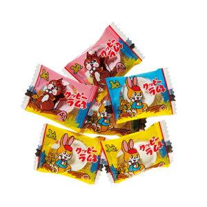 (本州送料無料) カクダイ製菓 1kgミニクッピーラムネ 5入