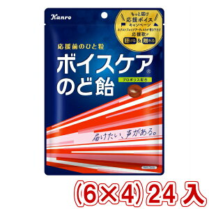 (本州送料無料) カンロ ボイスケアのど飴 個包装タイプ 70g (6×4)24入