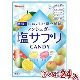 (本州一部送料無料) カンロ ノンシュガー塩サプリキャンディ (6×4)24入 (Y80)