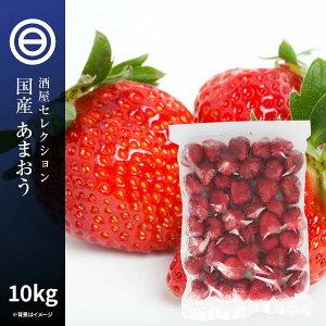 国産 福岡県産 イチゴ (あまおう) 冷凍 1kg(1000g) x 10袋 ハーフカット スライス 甘王 アマオウ 無添加 いちご 苺 果物 果実 フルーツ おやつ トッピング ヨーグルト ジャム スムージー ジュース