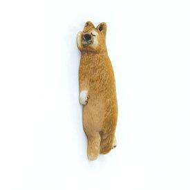 壁ごこち 柴犬 壁を愛してやまないマグネット