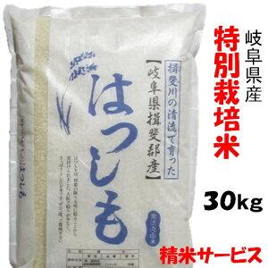 【生活応援セール】令和1年【特別栽培米】岐阜県産ハツシモ 玄米30Kg(10Kg×3)精米サービス