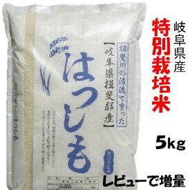 新米 令和2年産【特別栽培米】岐阜県産 ハツシモ 白米5Kg(レビューで次回増量)