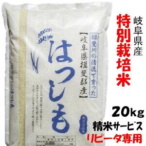 【生活応援セール】(リピータ専用)令和1年【特別栽培米】岐阜県産ハツシモ 玄米20Kg(10Kg×2)精米サービス
