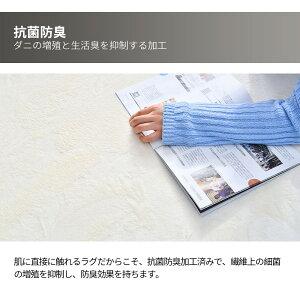 【在庫一掃★2000円お試し】ラグ洗えるラグマット200×250cmおしゃれカーペット角型床暖房対応オールシーズン防音お手入れ簡単シャギーラグカーペット絨毯ラグマットマイクロファイバーラグ
