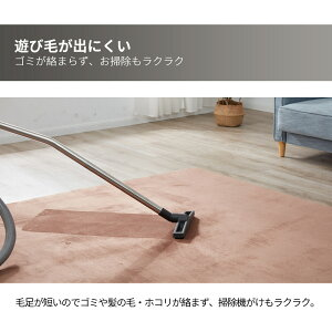 ラグ洗えるラグマット200×250cmおしゃれカーペット角型床暖房対応オールシーズン防音お手入れ簡単シャギーラグカーペット絨毯ラグマットマイクロファイバーラグ