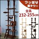 キャットタワー 突っ張り 爪研ぎ つっぱり猫タワー 全高232-255cm ハンモク 階段 梯子 多頭飼う キャットハウス 猫ベ…