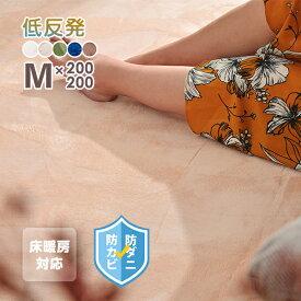【はっ水】ラグマット 低反発ラグ 厚手 極厚20mm 200×200cm おしゃれ カーペット 角型 撥水 低反発 防カビ 防ダニ ホットカーペット対応 オールシーズン ウォッシャブル 絨毯 無地 マイクロファイバー ラグ