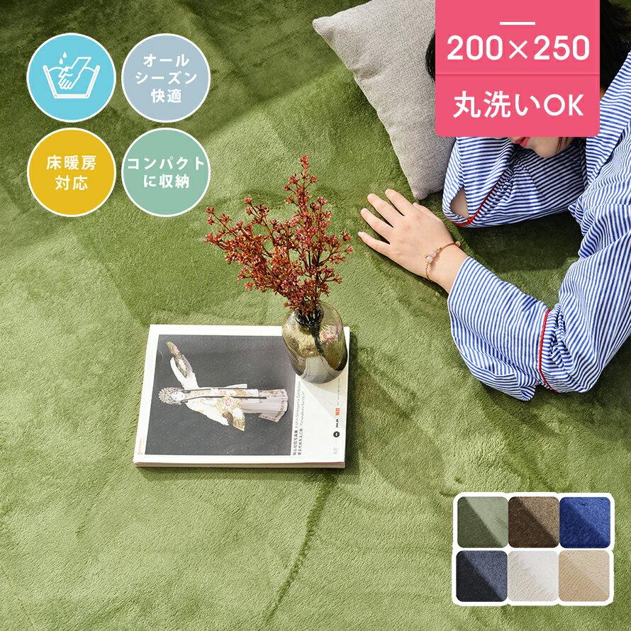 【今夜20時からポイント10倍】ラグ 北欧 200X250 3畳 ラグマット ウォッシャブル シャギーラグ カーペット ウォッシャブル 絨毯 無地 マイクロファイバー softsealeft
