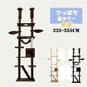 キャットタワー 突っ張り スリム 省スペース おしゃれ 爪研ぎ つっぱり猫タワー 全高232-255cm ハンモク 階段 梯子 …