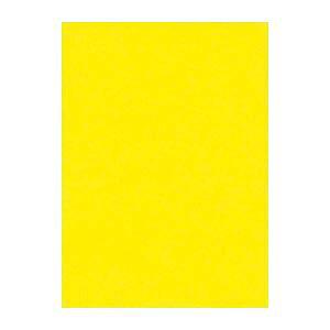 (業務用セット) 文運堂 ニューカラーR 四ツ切 横392×縦542mm 4NCR-319 レモン 100枚入 【×2セット】