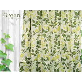 おしゃれなリーフ柄 遮光カーテン / 2枚組 100×178cm / グリーン 洗える ウォッシャブル 『リーフ』 九装 緑