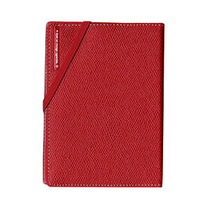 コンサイス スキミングブロック パスポートカバー皮革調R レッド CO-293156 【3個セット】 赤