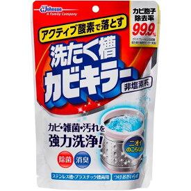 (まとめ)ジョンソン アクティブ酸素で落とす洗濯槽カビキラー250G 【×5点セット】