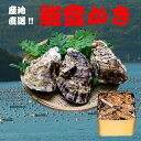 能登牡蠣 殻付き(9L缶・約30〜40個)