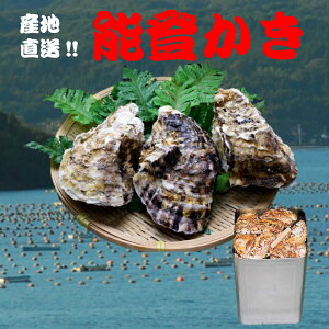 能登牡蠣 殻付き 一斗缶(18L缶・約70〜80個)