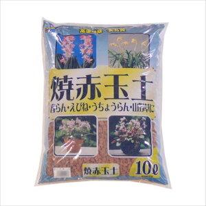 あかぎ園芸 焼赤玉土 大粒 10L 2袋  【abt-1523684】【APIs】