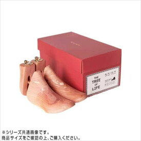 BRIGA(ブリガ) シュートゥリー0031AC-BOOT L  【abt-1477322】【APIs】