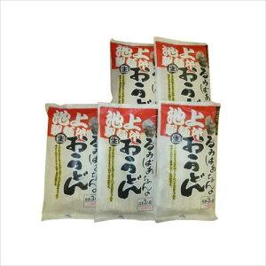池上製麺所 るみばあちゃんのうどん 3食つゆ付き 5袋セット  【abt-1070988】【APIs】 (軽税)