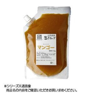 かき氷生シロップ マンゴー 業務用 1kg 3パックセット  【abt-1619424】【APIs】 (軽税)