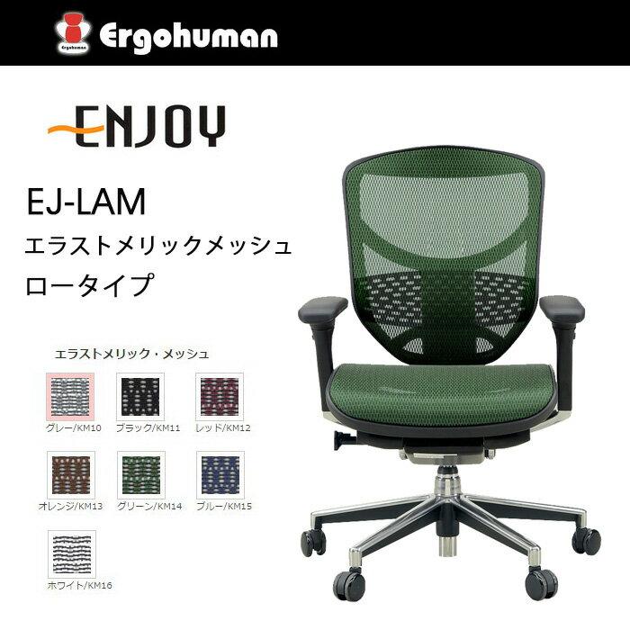 【送料無料】 エルゴヒューマン エンジョイ エラストメリックメッシュ ロータイプ KM-14 GN グリーン色