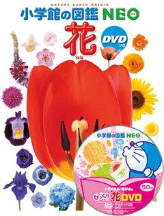 小学館の図鑑NEO魚(DVD付き)