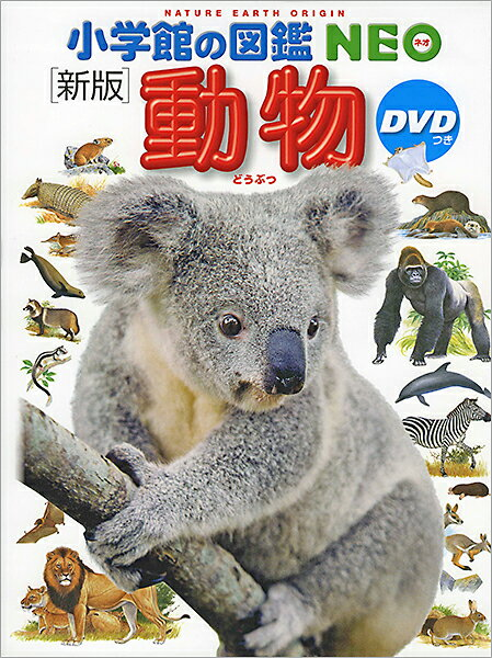 【エントリー+5倍】【高ポイント還元】小学館の図鑑NEO 動物(DVD付き)【ゆうパケット(追跡あり)送料無料】