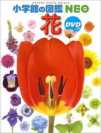 【8/1から最大450円OFFクーポン!】【高ポイント還元】小学館の図鑑NEO 花(DVD付き)