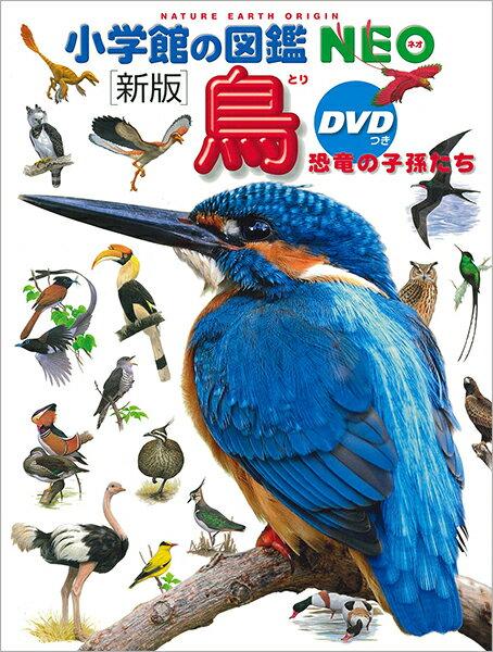 【エントリー+5倍】【高ポイント還元】小学館の図鑑NEO 鳥(DVD付き)【ゆうパケット(追跡あり)送料無料】